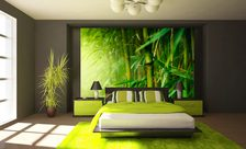A-juicy-green-color-of-the-bamboo-tree-bedroom-wall-murals-demur