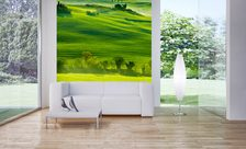 The-vistas-of-tuscany-landscape-wall-murals-demur