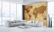 The-graphical-map-world-map-wall-murals-demur