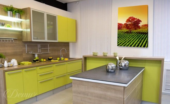 Energizing-kitchen-kitchen-canvas-prints-demur