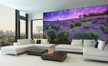 The-lavender-paradise-provence-wall-murals-demur