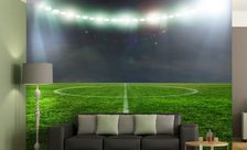 The-champions-league-stadium-wall-murals-demur