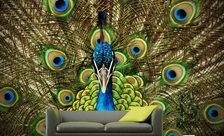 The-queens-peacock-animal-wall-murals-demur