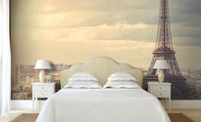 The Eiffel Tower wall murals Paris Demur