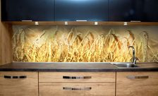 A-crop-feoff-kitchen-wall-murals-demur
