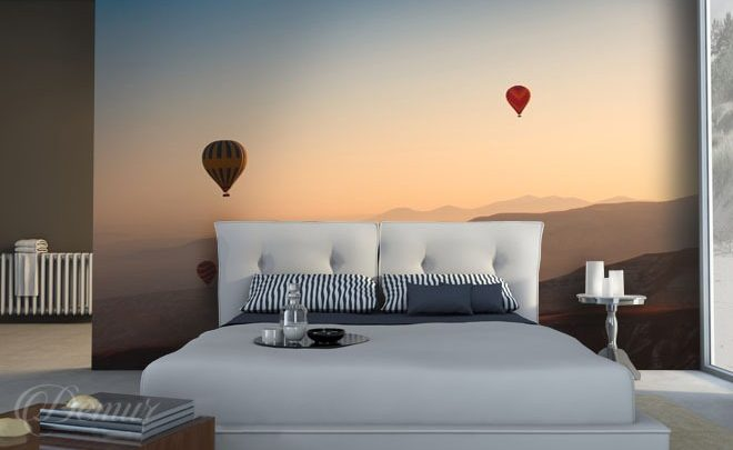 Flying-in-a-balloon-bedroom-wallpapers-demur