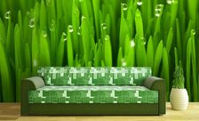 Greenery-sprinkled-with-dew-grass-wall-murals-demur