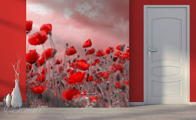 Poppies-in-the-wind-poppy-wall-murals-demur