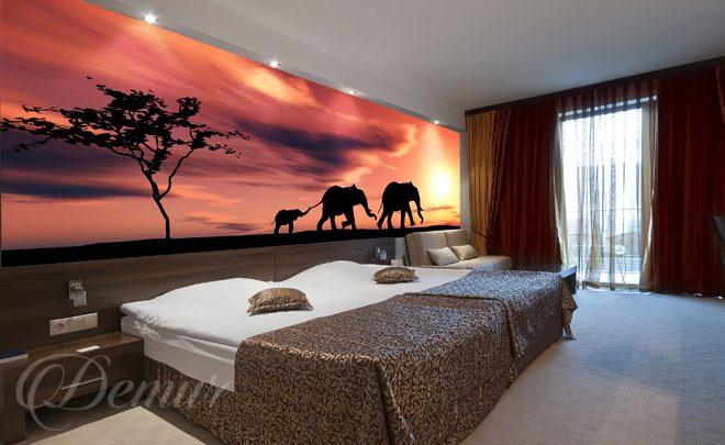 The African Elephants Bedroom Wall Murals Demur
