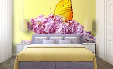 A-butterfly-resting-on-a-common-lilac-butterfly-wall-murals-demur