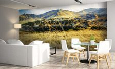 The-living-room-summits-mountain-wall-murals-demur