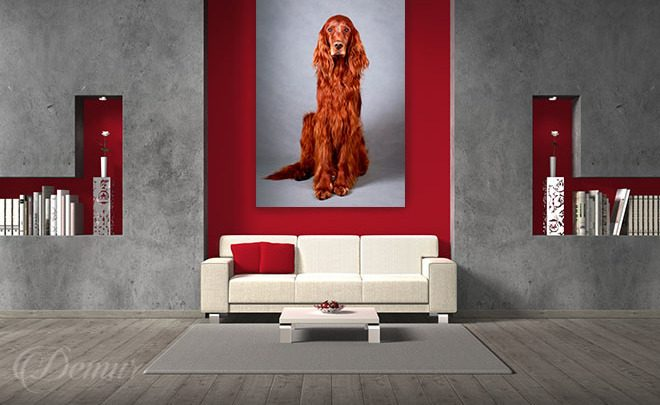 Sitting-in-silence-animals-canvas-prints-demur