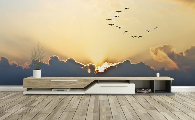 Birds-flying-toward-the-west-sky-wallpapers-demur