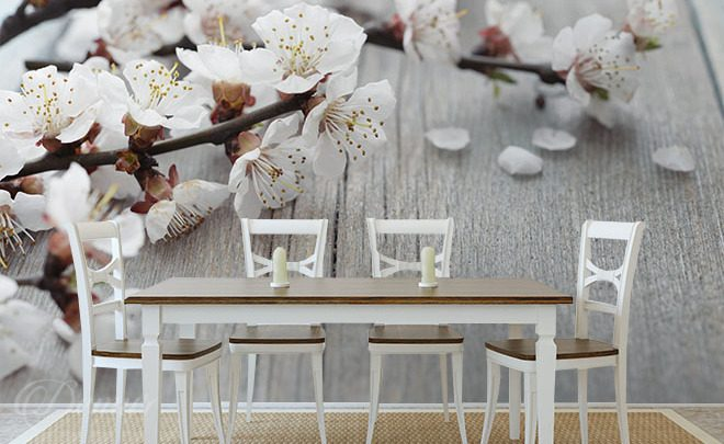 Blossoming-apple-trees-cafe-wallpapers-demur