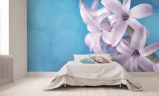 A-hyacinth-from-up-close-pastel-color-wall-murals-demur