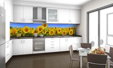 A-sunflower-plantation-kitchen-wall-murals-demur