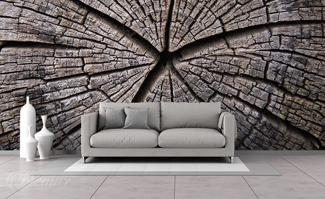The-story-of-an-old-tree-texture-wall-murals-demur