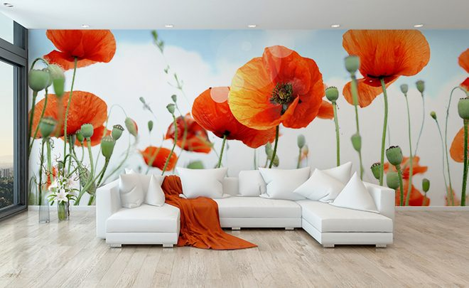 Radiant-poppies-poppy-wall-murals-demur