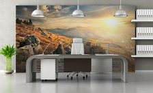 Up-on-a-hill-office-wall-murals-demur