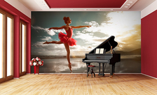 In-the-classical-red-dance-school-wall-murals-demur