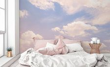 Morning-dreams-pastel-color-wall-murals-demur