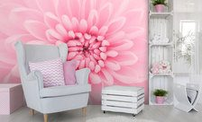 A-florist-in-the-pastel-pink-pastel-color-wall-murals-demur