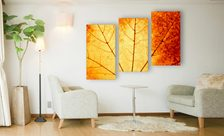 The-colors-of-fall-triptych-living-room-wall-prints-demur