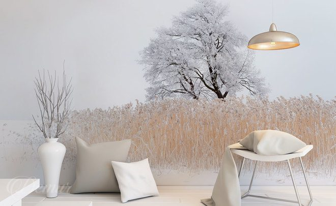 In-the-snowy-majesty-scandinavian-style-wallpapers-demur